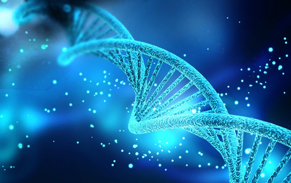 With new molecular techniques only published in the last two years, Professor FU and her team sequenced and analyzed more regions of the genome, particularly at positions also sequenced in other ancient humans.