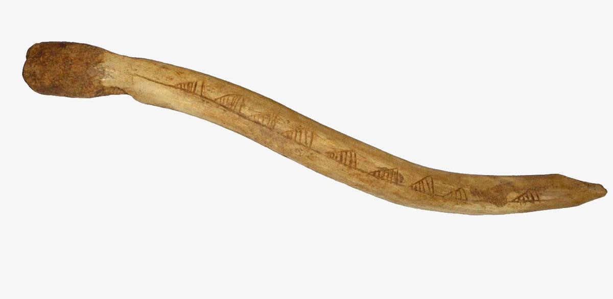 Ornamented bâton percé. Credit: Osipowicz et al (2017)