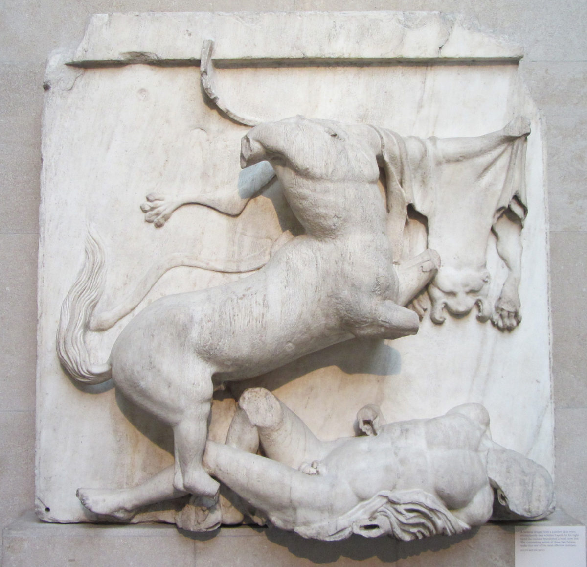 Panel from the Parthenon sculpture showing the battle between a centaur and and a Lapith. Metope XXVIII south. The Acropolis, Athens, Greece, around 440 BC. British Museum