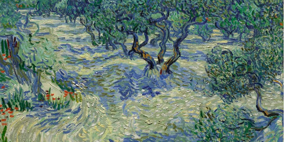 "Vincent Van Gogh ""Olive trees"" 1889, The Nelson-Atkins Museum of Art."
