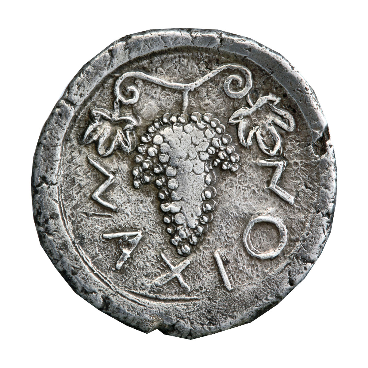 Silver drachm of Naxos, Sicily; depicted is a bunch of grapes encircled by the inscription ΝΑΧΙΟΝ. 525 – 500 BC © Athens, Alpha Bank Numismatic Collection (photo by P. Magoulas)