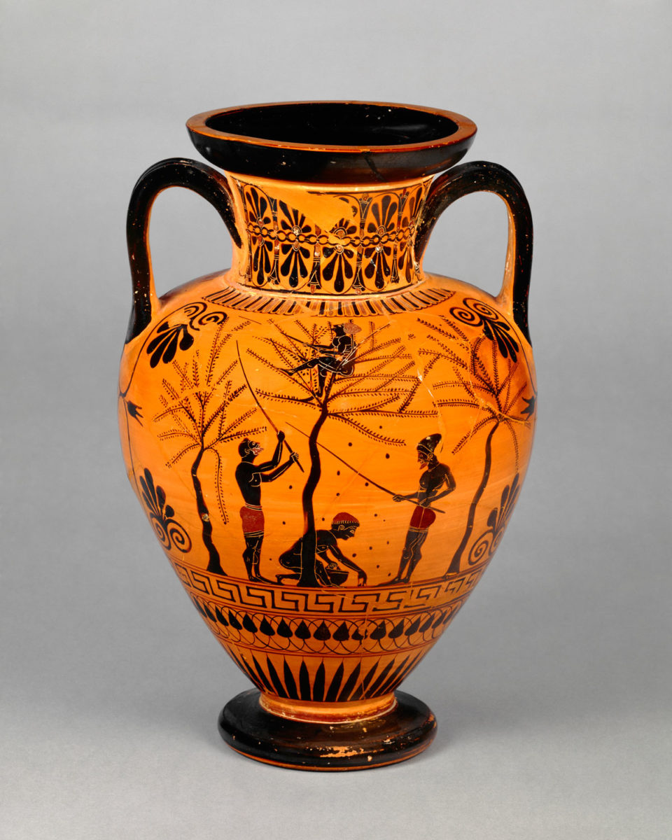 Attic black-figured amphora, attributed to the Antimenes Painter. Depicted is an olive harvest scene. 520 – 510 BC © London, The British Museum