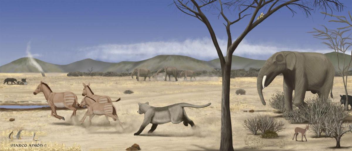 This is an image of an arid savanna during the middle Miocene in Madrid. Credit: Marco Ansón