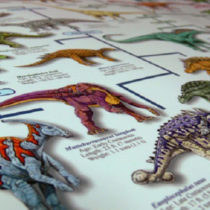 Time to rewrite the dinosaur textbooks? Not quite yet!