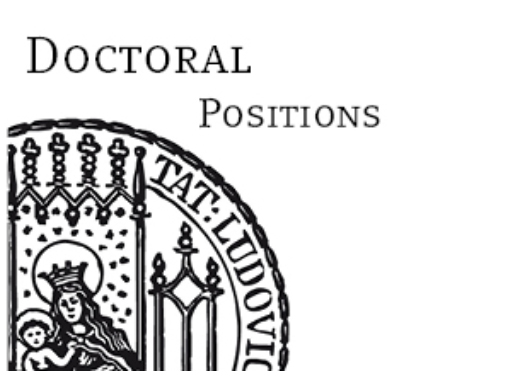 Successful candidates will write a doctoral dissertation within their individual discipline.