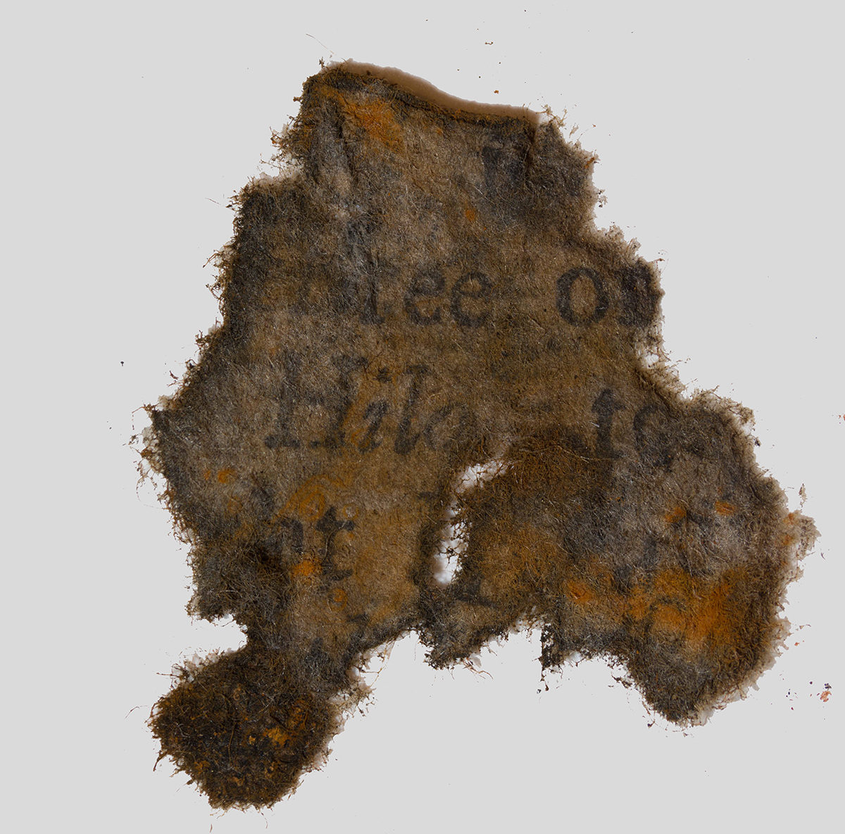 One the 16 paper fragments found in Blackbeard's ship.