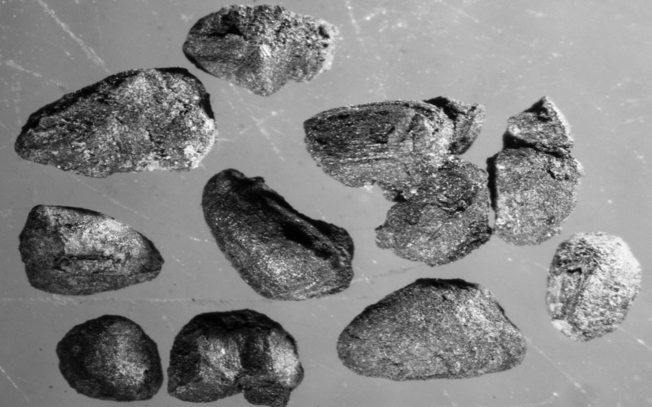 Fragments of cereals from Archontiko, Early Bronze Age.