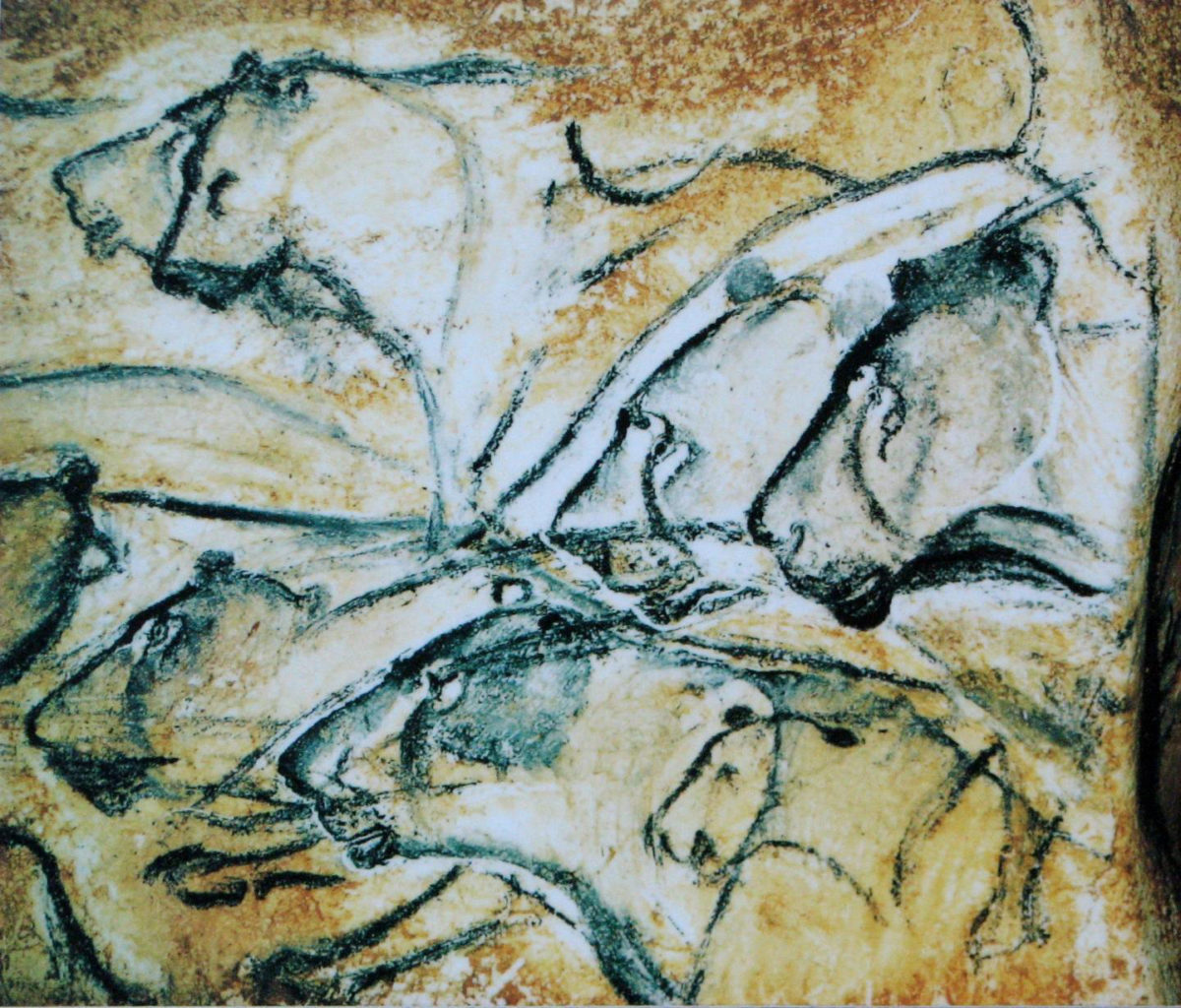 Replica of drawing of lions painted in the Chauvet Cave. Art in the cave has been identified as created by early modern humans.