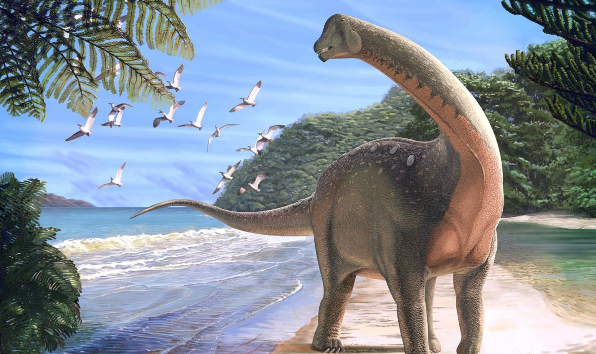 This is a life reconstruction of the new Titanosaurian dinosaur Mansourasaurus shahinae on a coastline in what is now the Western Desert of Egypt approximately 80 million years ago. Credit: Andrew McAfee, Carnegie Museum of Natural History