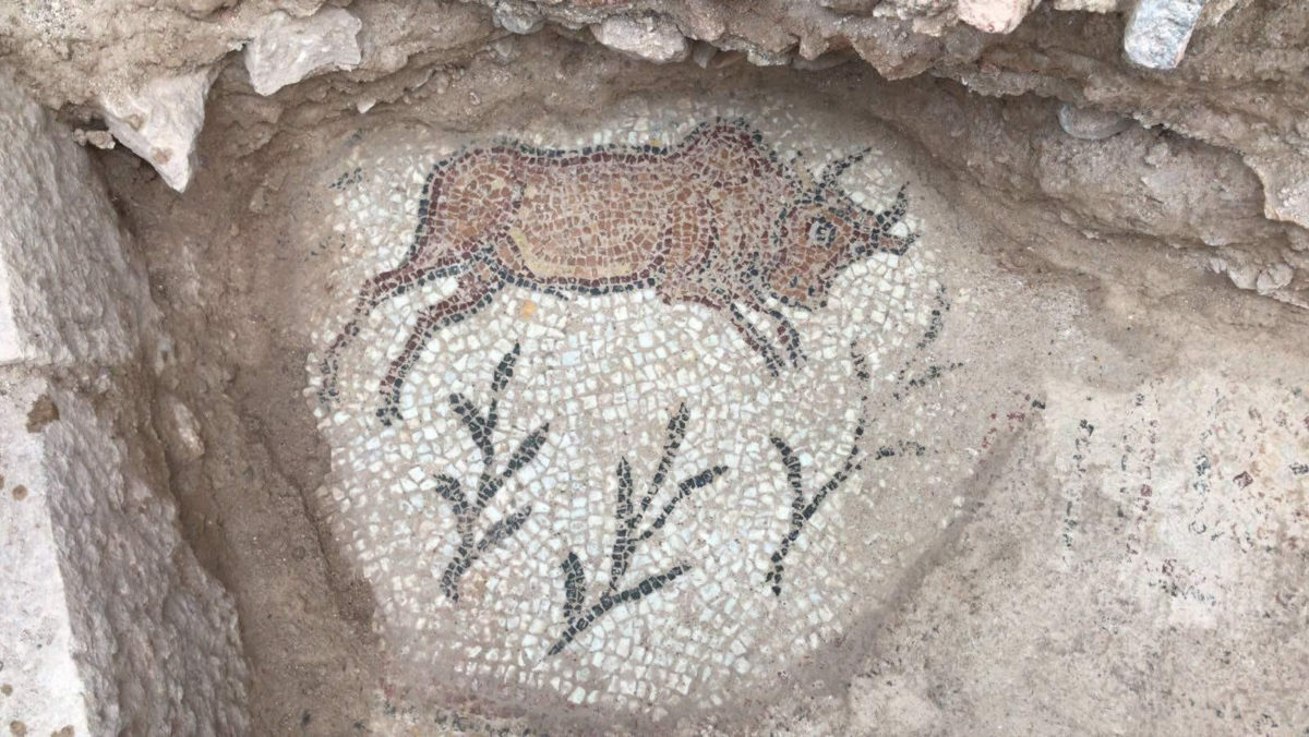 Mosaic found in the structure. AA Photo