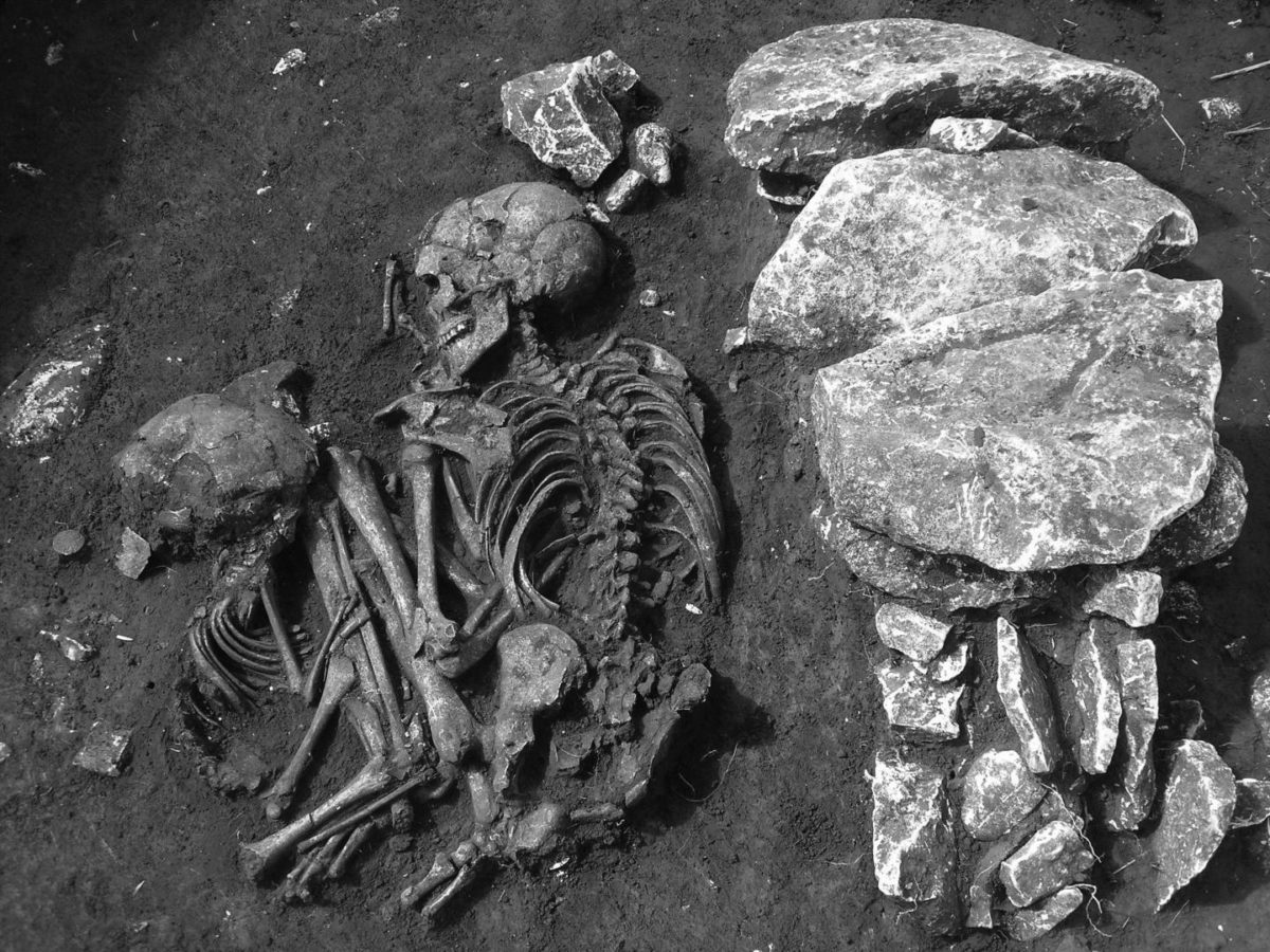 This field excavation photo shows a double burial in Kargadur, located in Istria County, Croatia. The skeletal remains are among 225 skeletal remains sampled in a study of two major migrations across southeastern Europe during prehistoric times.  Credit: Darko Komšo