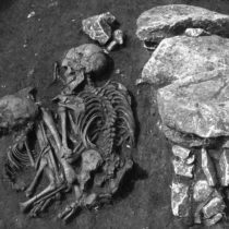 New research sheds light on prehistoric human migration in Europe