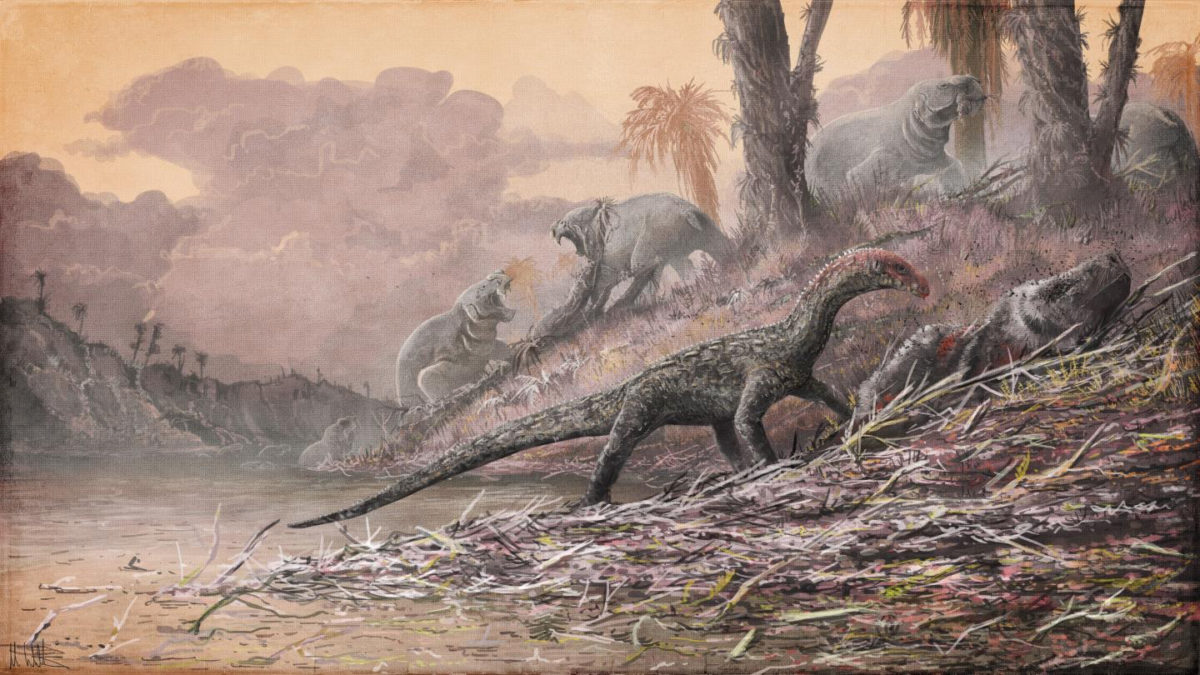 Teleocrater, an early dinosaur relative, is shown feeding on Cynognathus. Image credit: Mark Witton/Natural History Museum, London