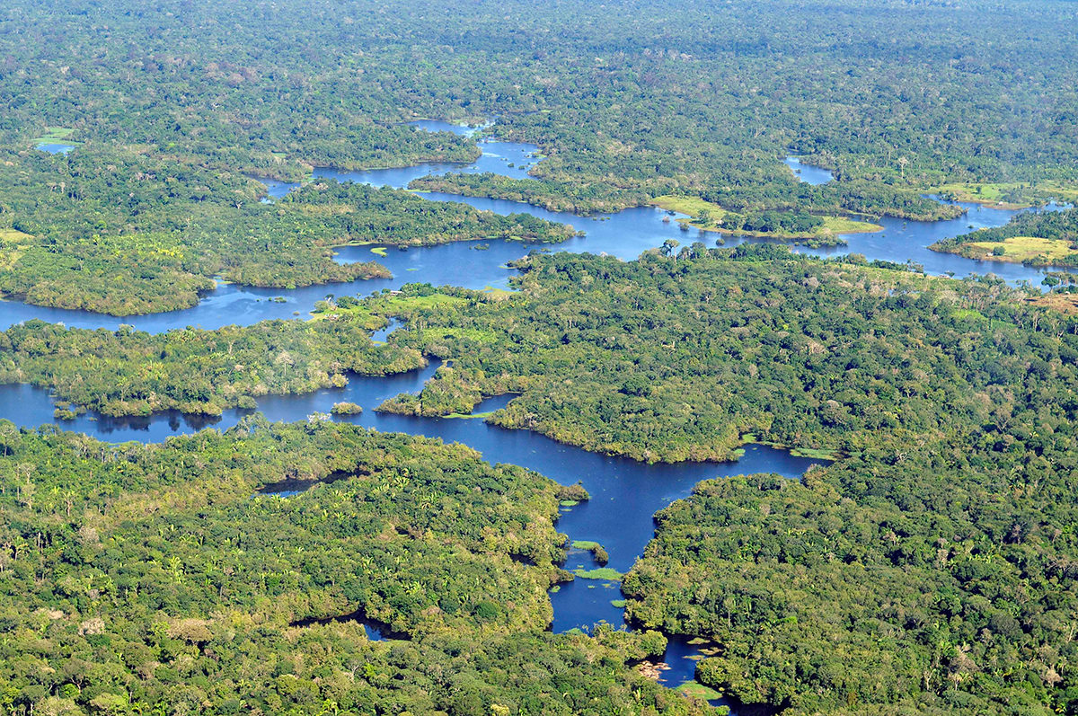 Huge parts of the Amazon are still unexplored by archaeologists, particularly areas away from major rivers.