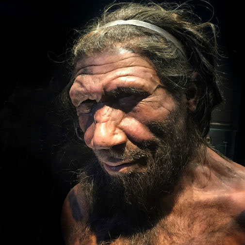 Neanderthals were genuinely caring of their peers. Pic credit: Allan Henderson