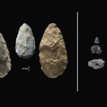 Scientists discover evidence of early human innovation