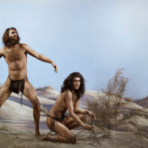 Modern humans interbred with Denisovans twice in history