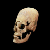 New insights into the origin of elongated heads in early medieval Germany
