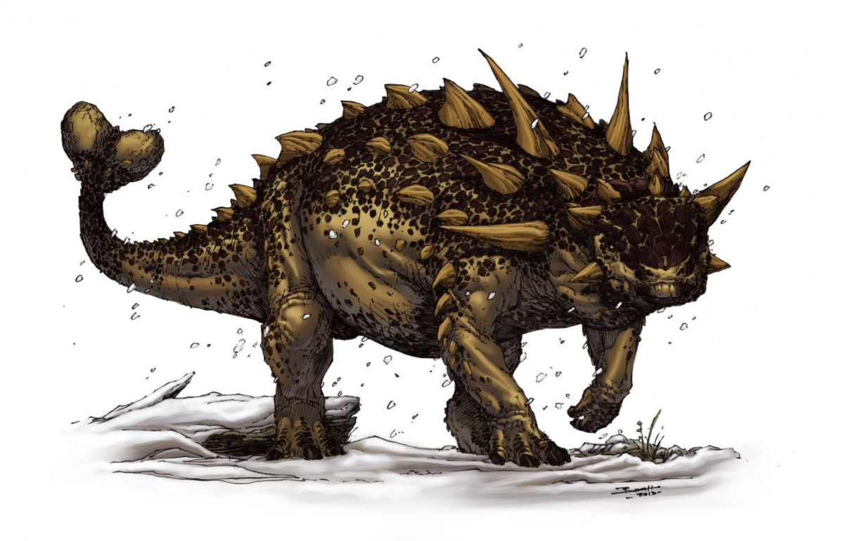 This is an illustration of Euoplocephalus, an ankylosaur. Ankylosaurids are sometimes called the 'tanks of the Cretaceous' given their squat bodies and armored hides. Credit: Brett Booth © Brett Booth