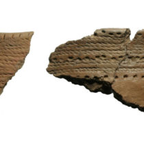 Skilled female potters travelled around the Baltic nearly 5000 years ago