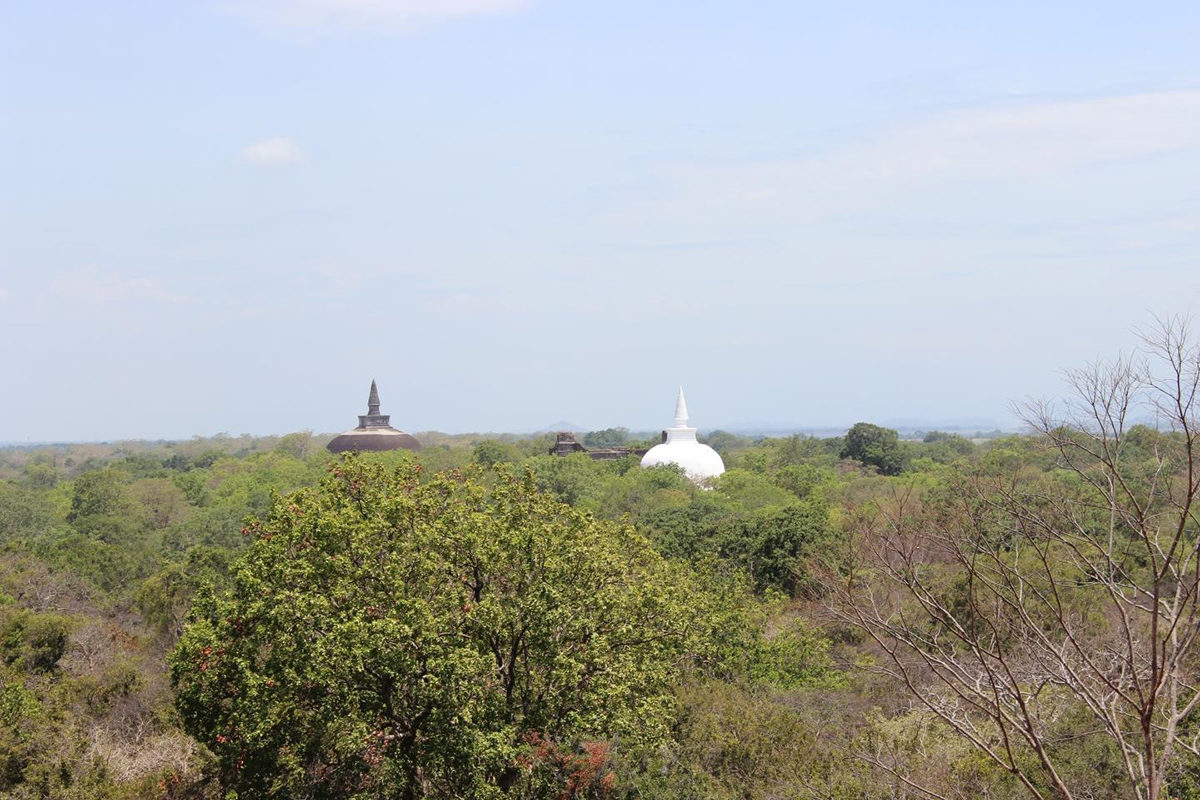 Relic Buddhist stupas rising out of the tropical forest at Polonnaruwa, Sri Lanka. Credit: PAtrick Roberts