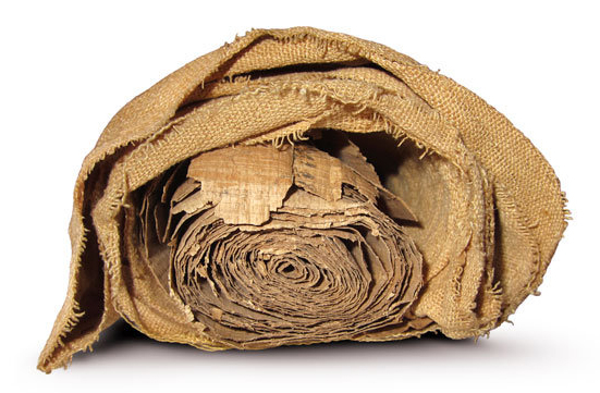 Linen bundle in which was wrapped an unknown, yet unrolled papyrus scroll.