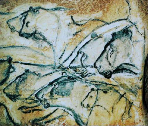 Detailed illustrations of lions painted in the Chauvet Cave. Credit: WikiCommons.