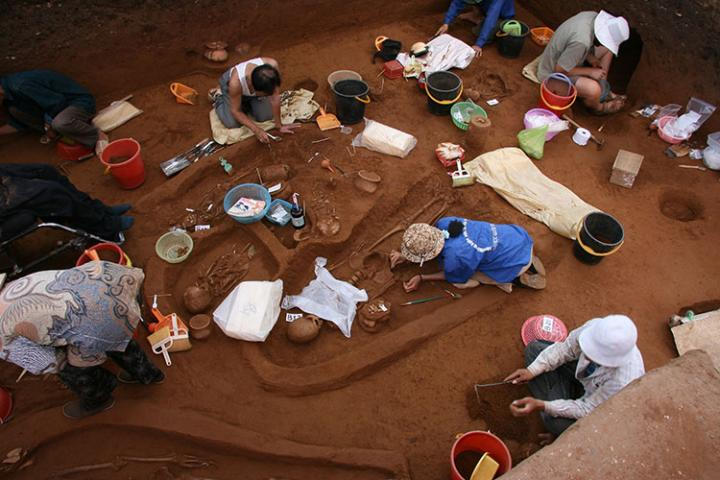 Field workers excavate ancient human remains at Man Bac, Vietnam, in 2007. DNA from skeletons at this site was included in the current study. Credit: Lorna Tilley, Australian National University