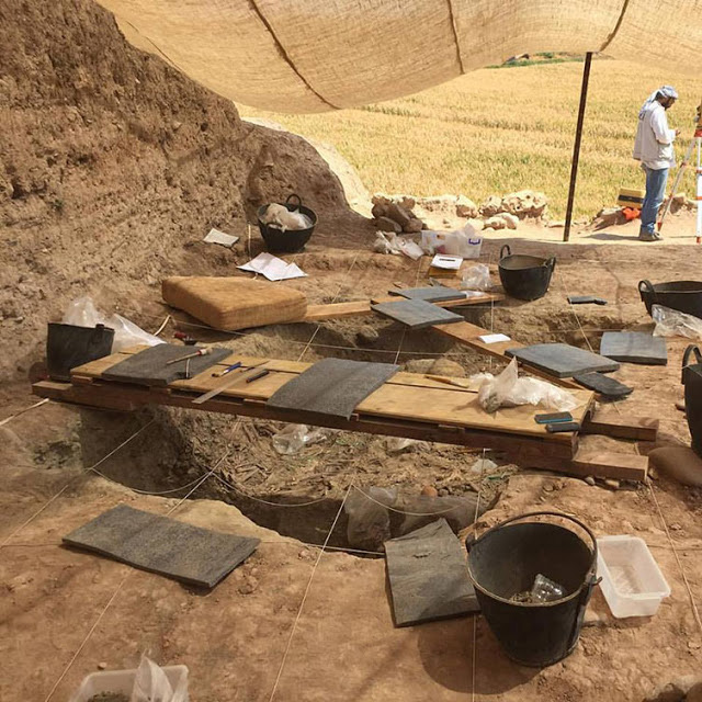 The remains of at least 11 people, both male and female, ranging from age 11 to young adults, have been  uncovered in an excavation of three graves [Credit: Başur Höyük Research Project]