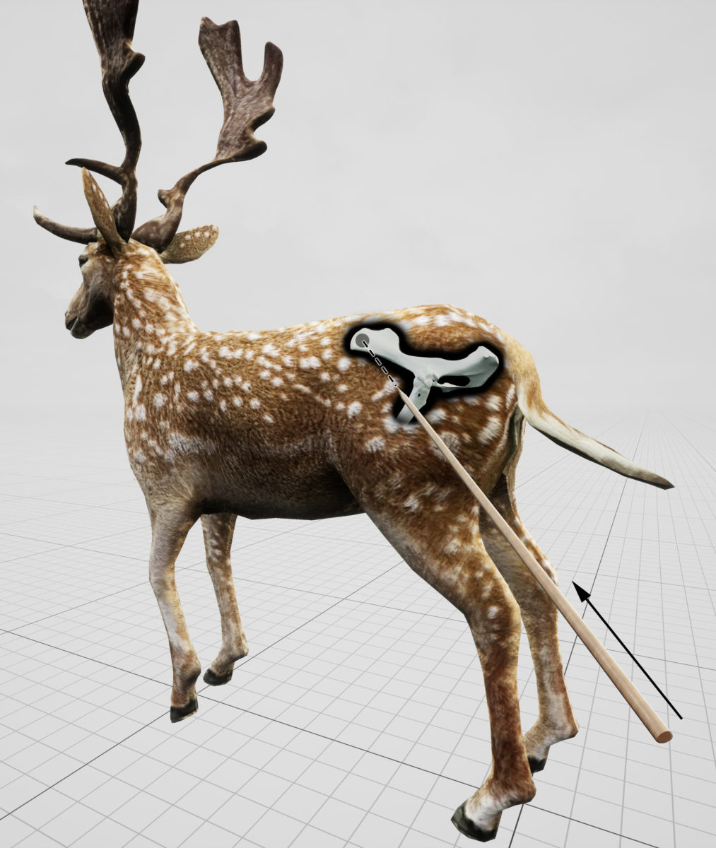 Estimated impact angle shown in relation to a standing fallow deer for the hunting lesion observed in the pelvis of an extinct fallow deer, killed by Neandertals 120,000 years ago on a lake shore close to current-day Halle (Germany). Credit: Eduard Pop, MONREPOS Archaeological Research Centre and Museum for Human Behavioural Evolution, Römisch-Germanisches Zentralmuseum, Leibniz-Researchinstitute for Archaeology