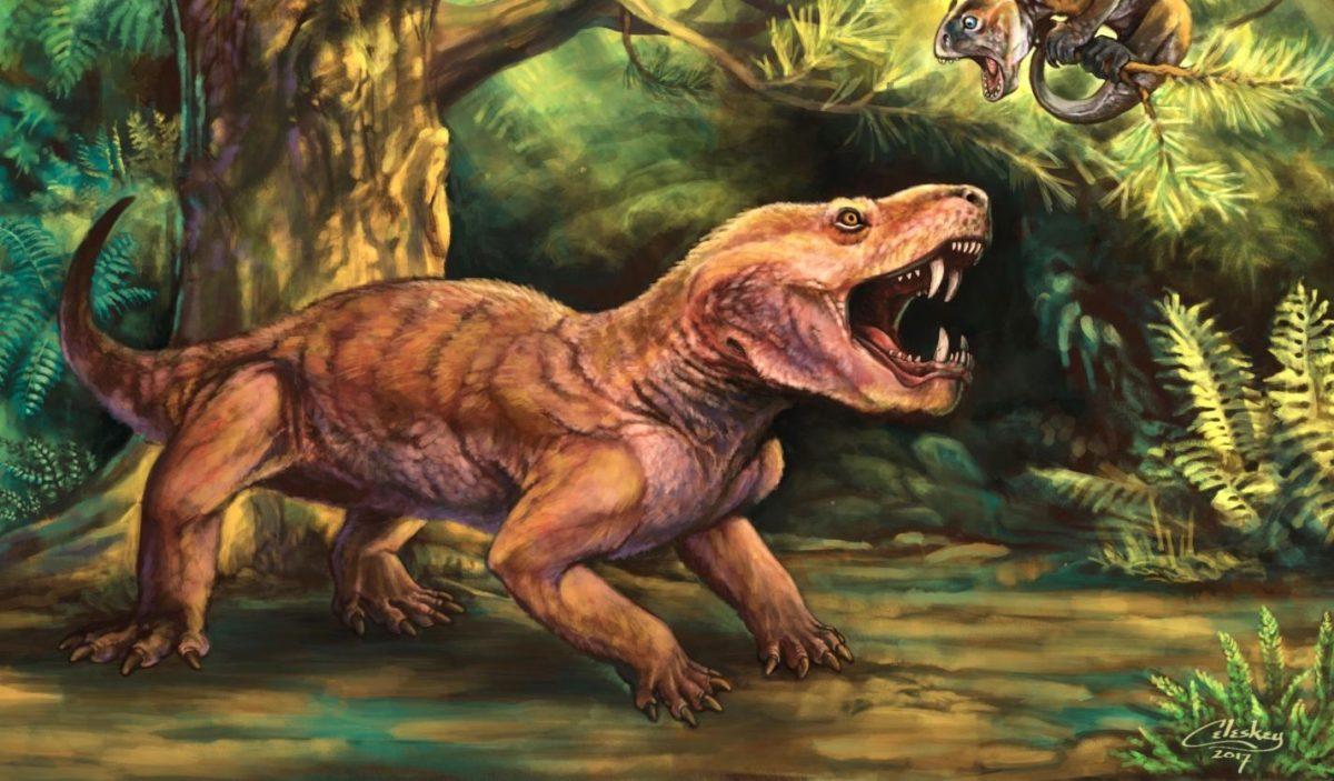The therocephalian Gorynychus masyutinae, top predator of the Kotelnich fossil assemblage. Credit : Matt Celeskey