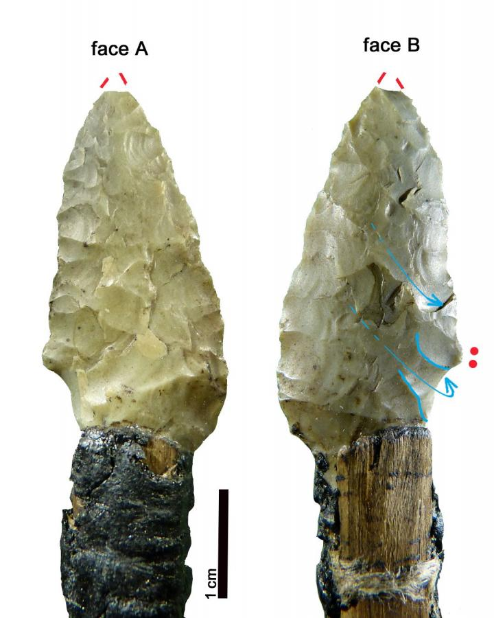 Stone tool. Credit: Wierer et al (2018)
