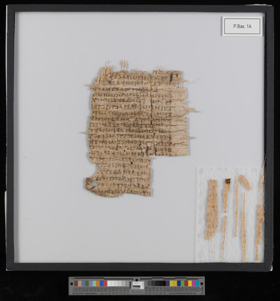After conservation: cleaned, smoothed and consolidated. A specialized papyrus conservator was brought to Basel to make this 2,000-year-old document legible again. Credit: University of Basel