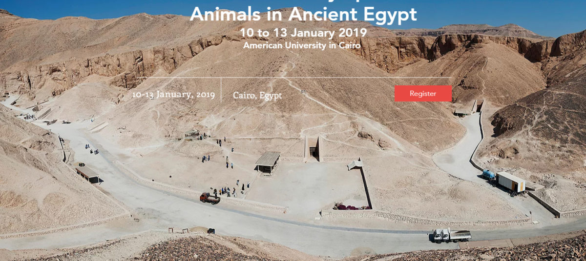 Homepage image of the BAE-ISAAE 2019 Joint Conference's site.