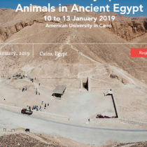 Bioarchaeology and Animals in Ancient Egypt