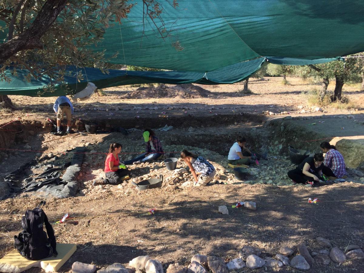 View of the escavation at Lisvori.