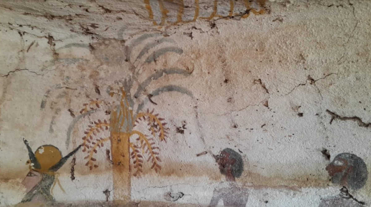 One of the recent finds in the Aswan area.