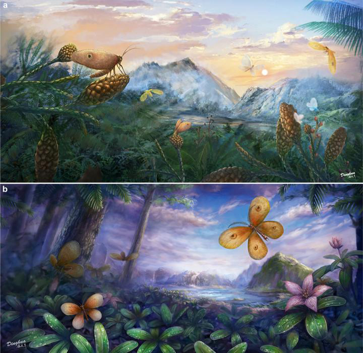 a. Jurassic kalligrammatids in the Daohugou forest. b. Cretaceous kalligrammatids in the Burmese amber forest Credit: YANG Dinghua
