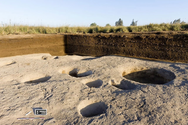 The mission has discovered several storage magazines which contained a large number of animal bones and botanical remains as well as pottery and stone tools which confirms the existence of settled societies in in Delta's wetland since 5th millennium B.C.