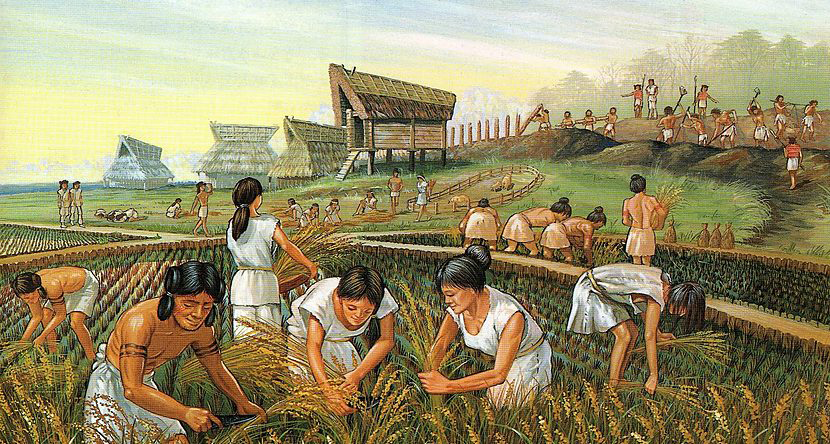 Life in a wet rice farming village in Japan c.300 BC. Credit: Heritage of Japan