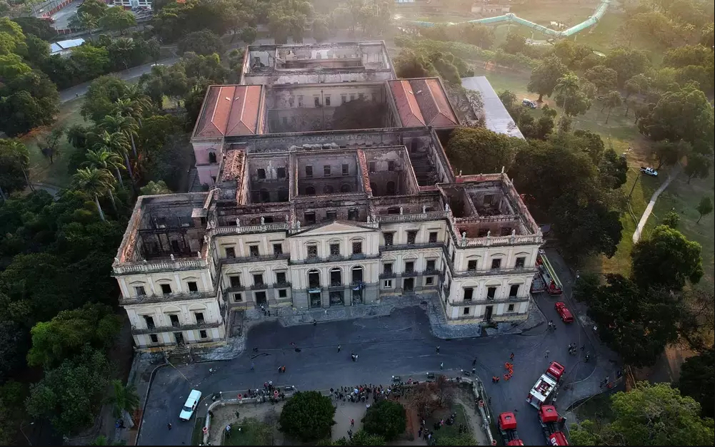Earlier this month, a catastrophic fire tore through Brazil's National Museum and destroyed a wealth of biodiversity and cultural artifacts.