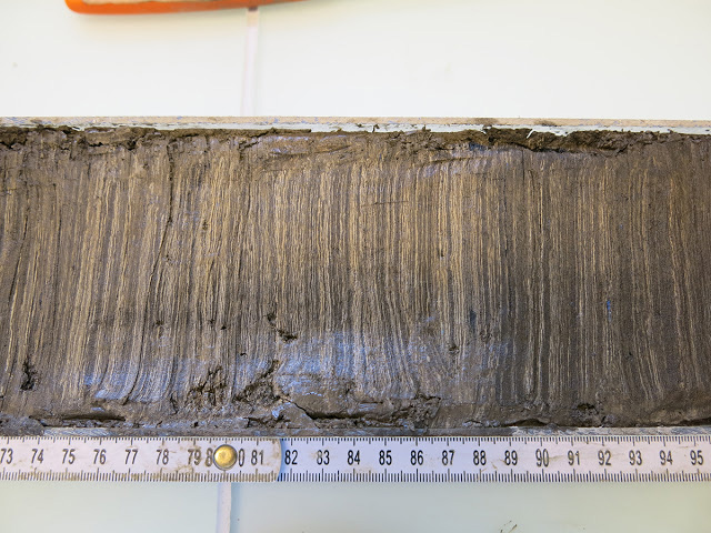Example of a sea sediment core (here from Lake Moossee near Bern): yearly layered sediment, around 3800-3600 BC.  At that time, a settlement of the western Switzerland Cortaillod Culture was situated near a present-day  swimming pool at Lake Moossee. Credit: © University of Bern/Fabian Rey