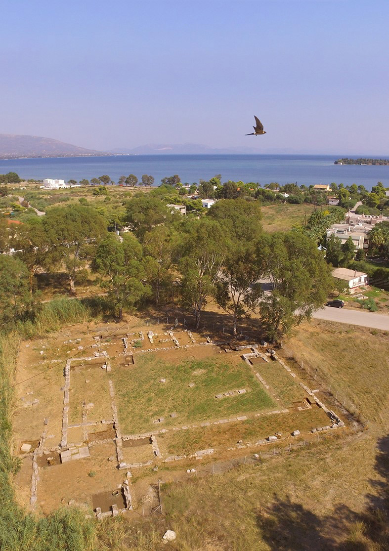 Aerial photograph of the South Palestra from the west. Amarynthos is visible in the background.