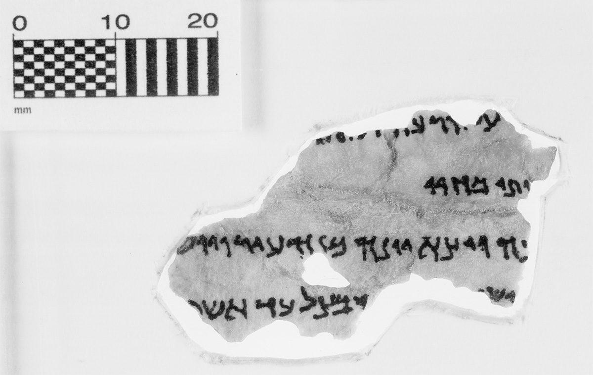 Dead Sea scrolls fragments. Credit: Museum of the Bible