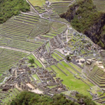 Ancient Andean genomes show distinct adaptations to farming and altitude