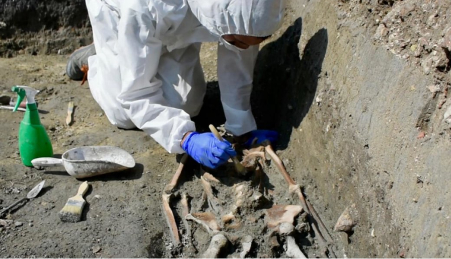 This is the skeleton discovered during the excavation in Torcello Island, Venice, Italy. Credit: Ca' Foscari University of Venice