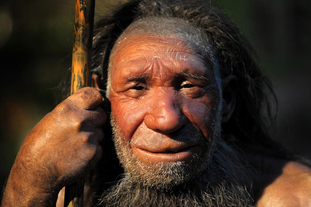 Recent research is giving the lie to a belief that Neanderthal man was unintelligent and unsophisticated.