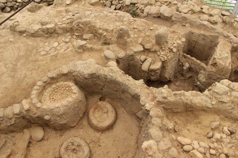 Ceremonial site of Santa Ana La Florida archaeological site near Palanda, Ecuyador. C. Lanaud, CIRAD