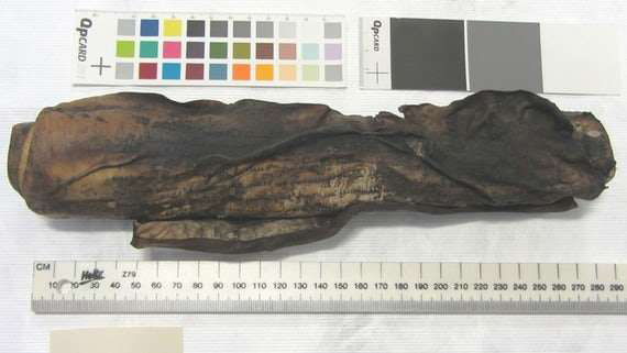 The scroll, which was 270mm wide, would have contained information on life in the manor and included details on land transactions, disturbances of the peace, payment of fines, names of jurors and information on the upkeep of land.