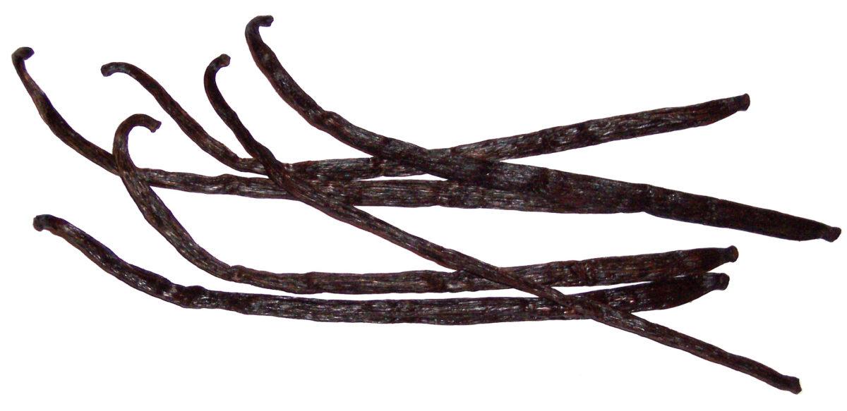 Vanilla beans. Wikimedia Commons
